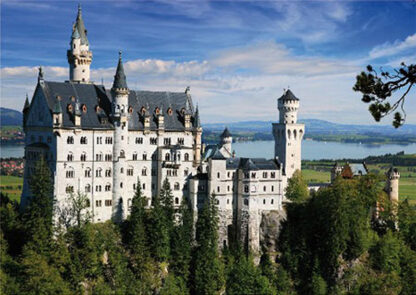 Soul Puzzles D Toys Cardboard Puzzles - 500 pieces | Germany- Schloss Neuschwanstein